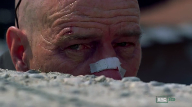 Walter White Breaking Bad End Times